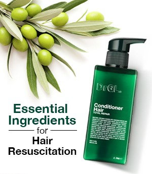 Essential Ingredients For Hair Resuscitation
